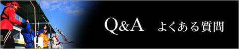 Q&A よくある質問